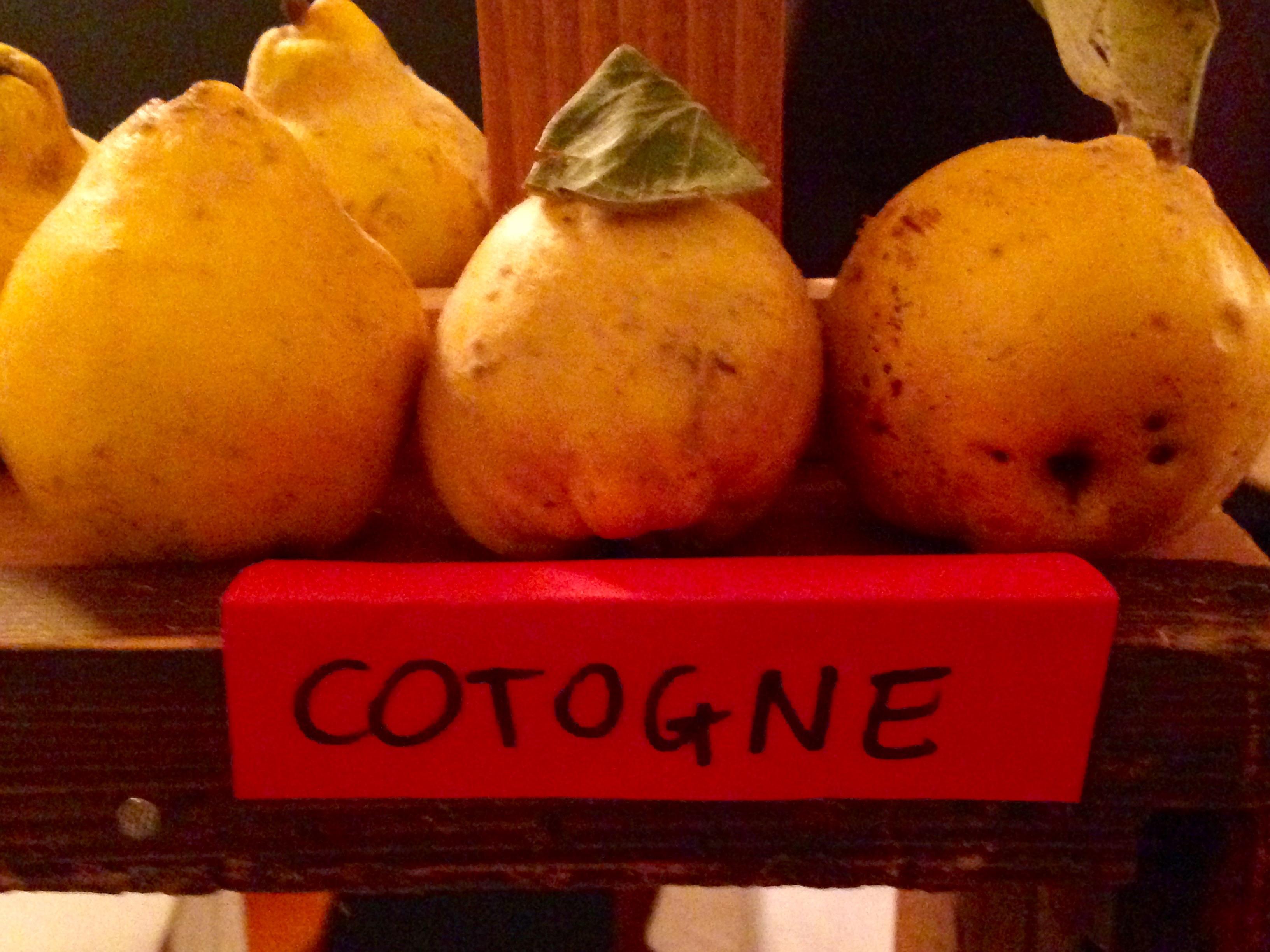 Agricola Solan - Cotogne