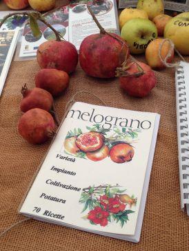 Mandillo dei Semi 2015 - Melograno 70 Ricette
