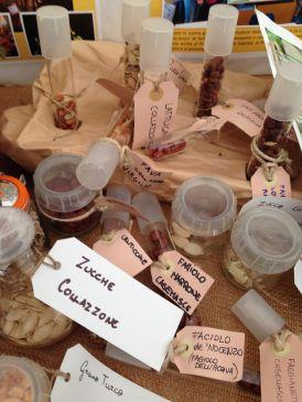 Mandillo dei Semi 2015 - Zucche Collazzone