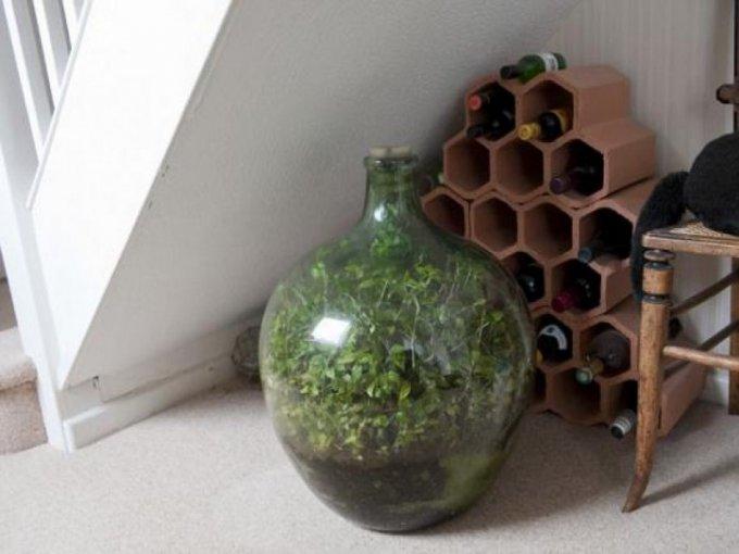 Giardino in Bottiglia - Il Giardino