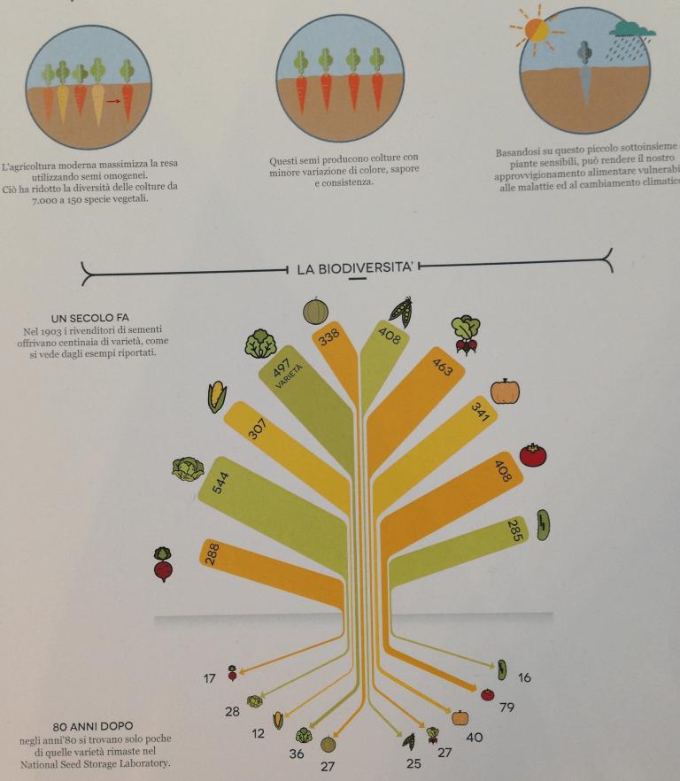 Design for Seed Savers - Biodiversità
