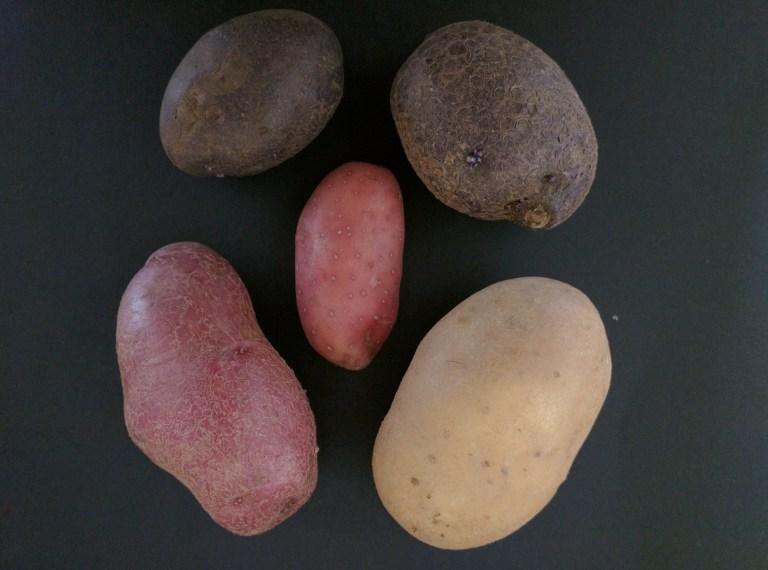 patate-esselunga