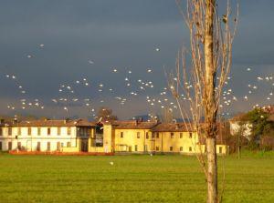 Chiaravalle e Ruralopoli