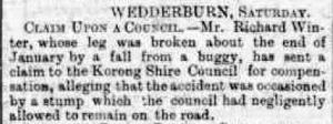 1895 Richard Winter claim to council