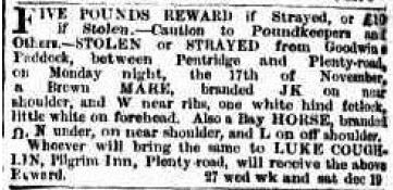 1856-3-dec-the-argus-luke-coughlin-reward-for-horses