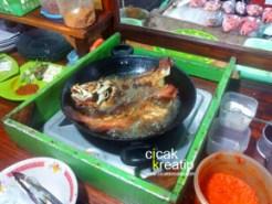 kampung solor kupang ntt4