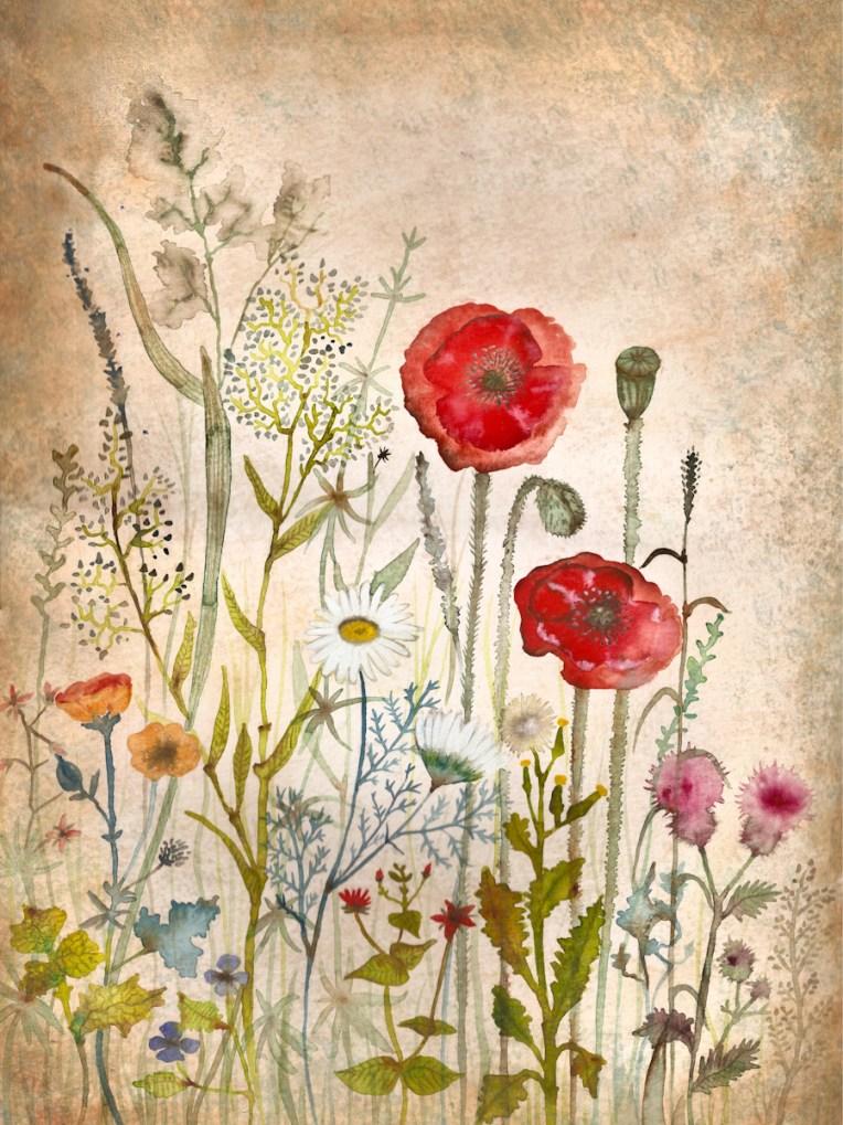 fiori web-3