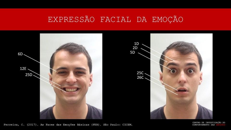 pontuação análise FACS expressão facial paul ekman