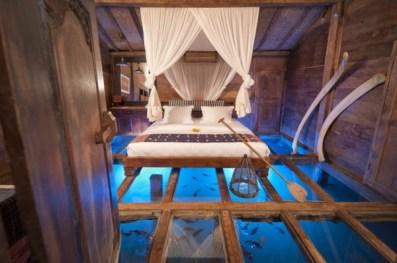 aquarium chambre 3