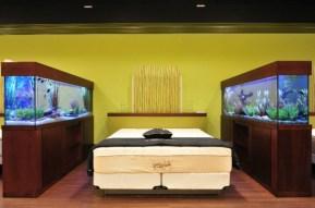 idée-aquarium