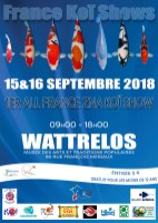 2018-09-15-france-koi-show-wattrelos