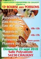 2018-09-23-13eme-bourse-aux-poissons-chaligny