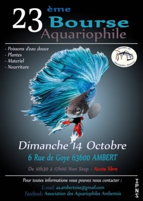 Association des Aquariophiles Ambertois - L'Aquaramiaud