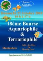 bourse_Montauban_2018