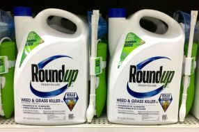 le-round-up-coeur-d-un-proces-contre-monsanto