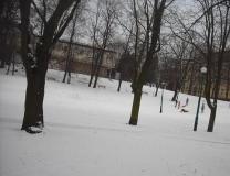 zima-na-sankach
