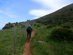 Bike Tours and Bike Rental in Palermo - Sicily