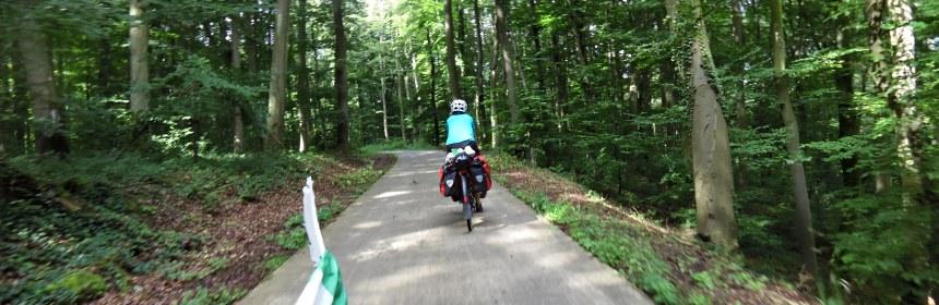 schwarzwald in bici