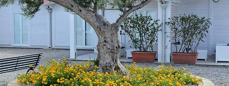 Agriturismo Alessandra Bike hotel in Sicilia - Italia