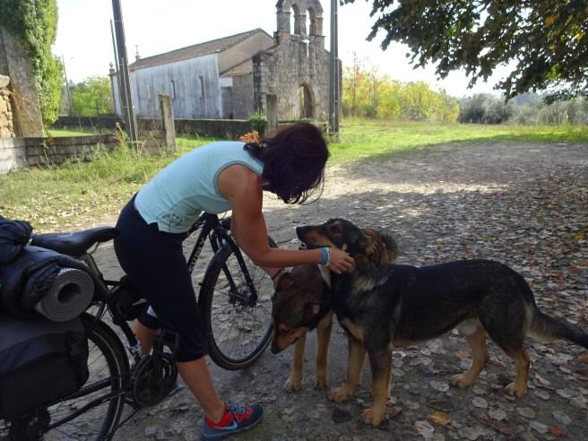 cicloturismo-outono-2016-dia-3-ecopista-do-dao-coimbra-059