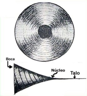 Estrutura de um ChakraEstrutura de um Chakra
