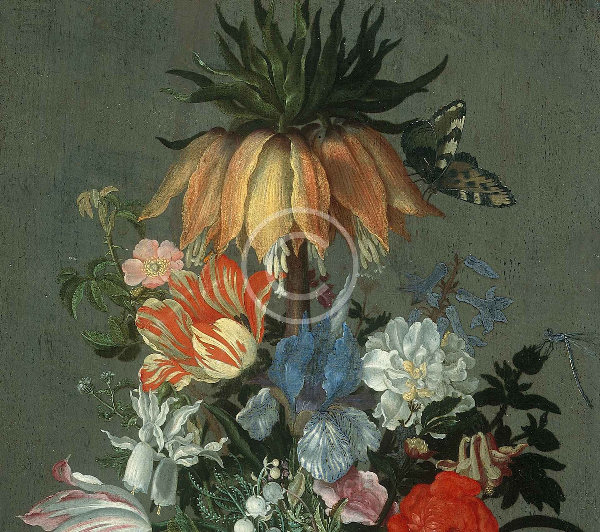 Flower Still Life with Crown Imperial