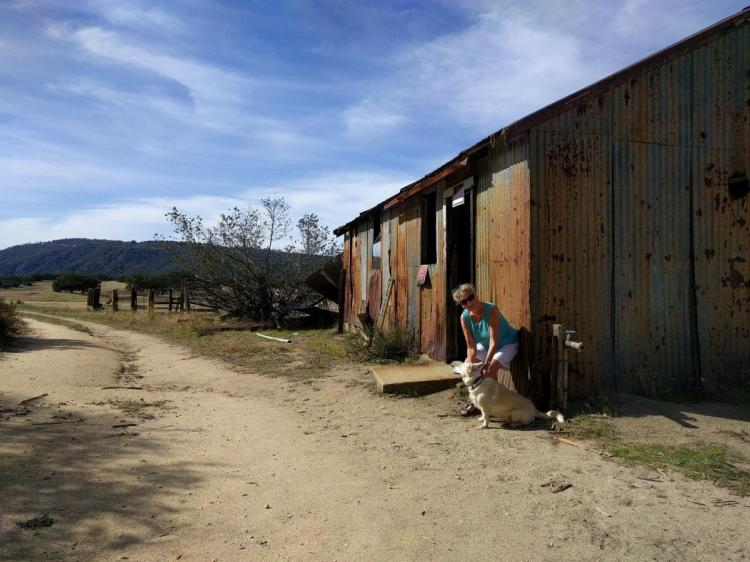 Georgie and Ginger at Love Valley - Palomar Mountain