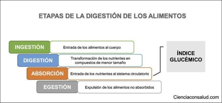 indice glucemico y digestion