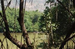 ciencia de cuba_ciencia cubana_manglares de cuba_santiago de cuba_III Taller Regional de Formación de Capacidades para el Manejo Costero (21)