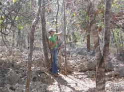 ciencia de cuba_ciencia cubana_anillamiento de aves en cuba_estación ecológica siboney juticí (10)