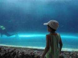 ciencia de cuba_portal de la ciencia cubana_acuario de baconao_reserva de la biosfera baconao (30)