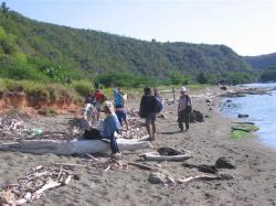 ciencia de cuba_portal de la ciencia cubana_niños y educación ambiental en cuba_limpieza de las costas de santiago de cuba (8)