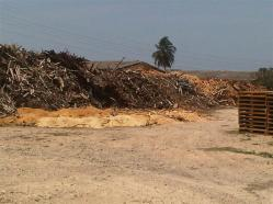 ciencia de cuba_gasificador de biomasa forestal (10)