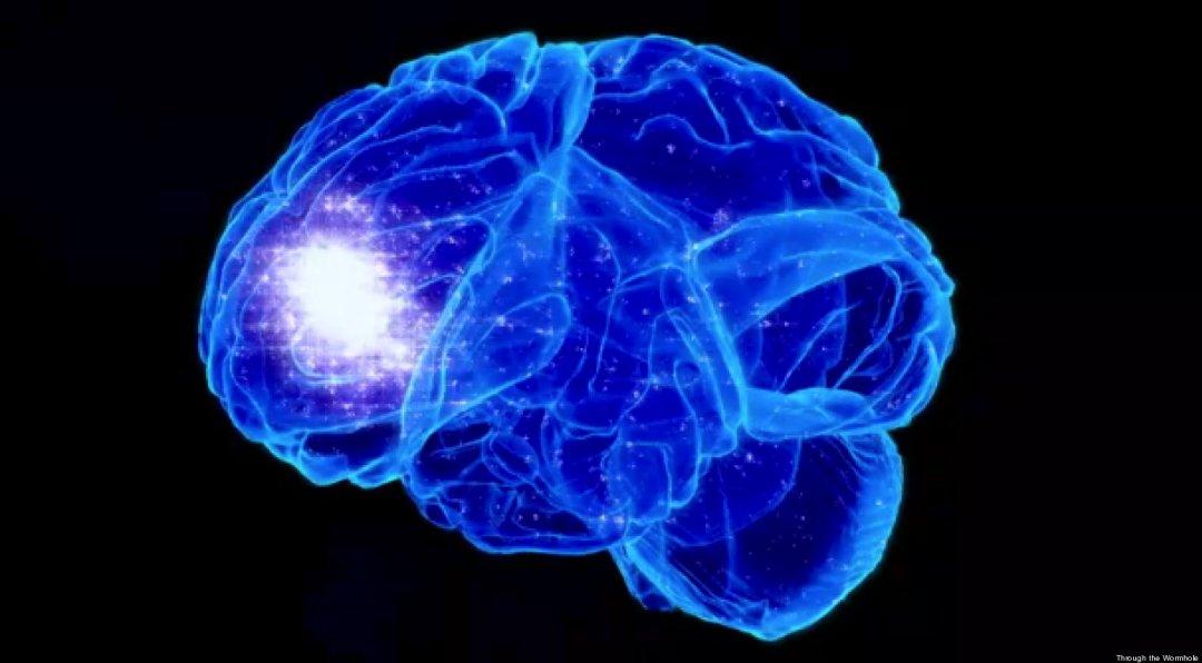 Meditar cérebro