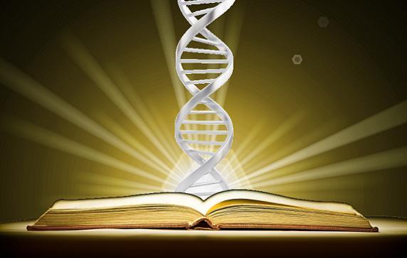 Lições de Vida com Ciência é Concordismo?