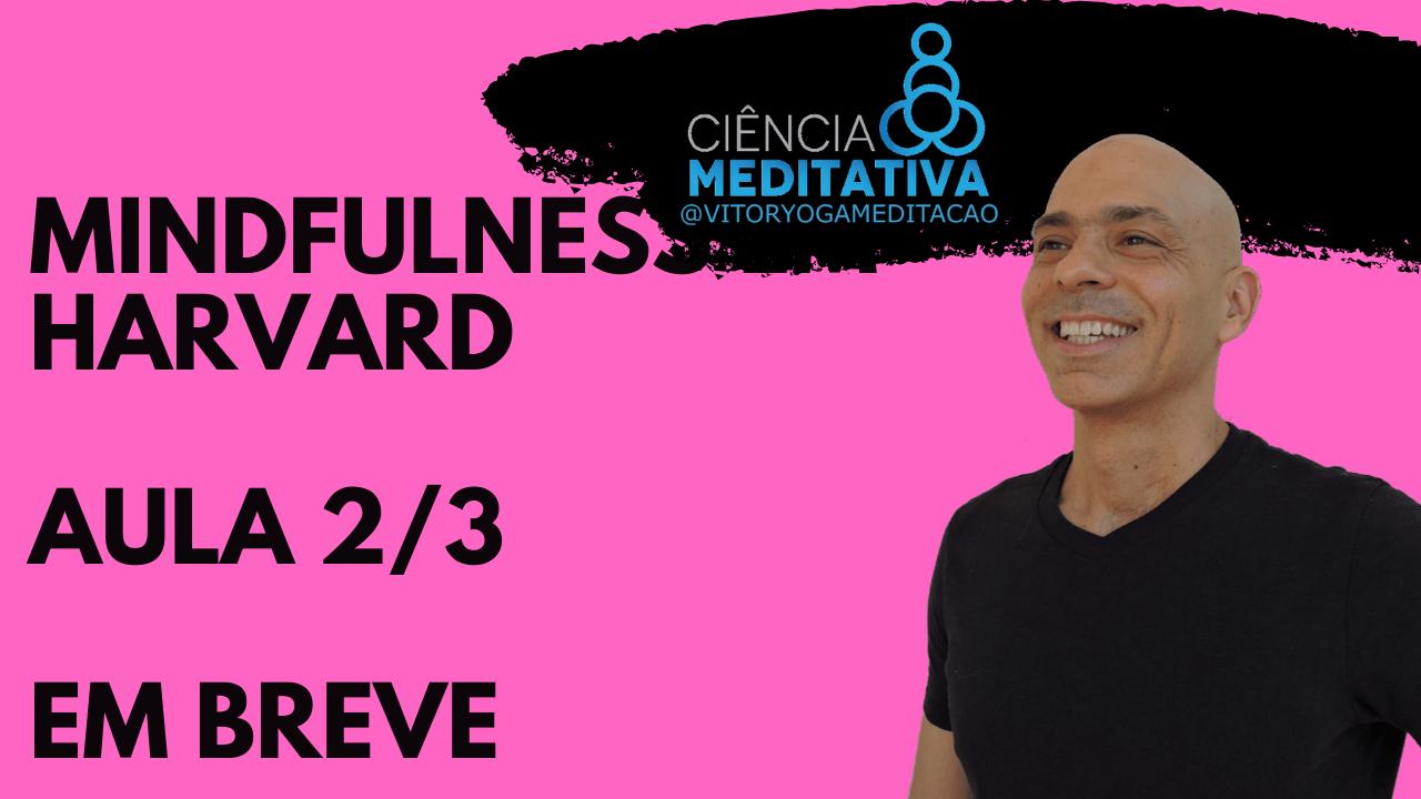 Mindfulness em Harvard Breve 2