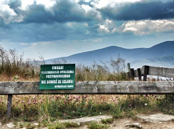 Po Bieszczadzkim Parku Narodowym można poruszać się po wyznaczonych szlakach
