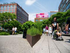 High Line - początek, tuż przy Chelsea Market
