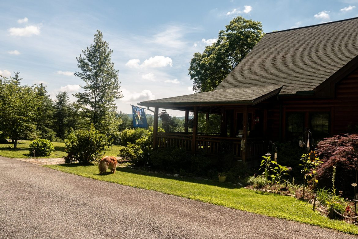 Hunter | Glade Valley Bed and Breakfast