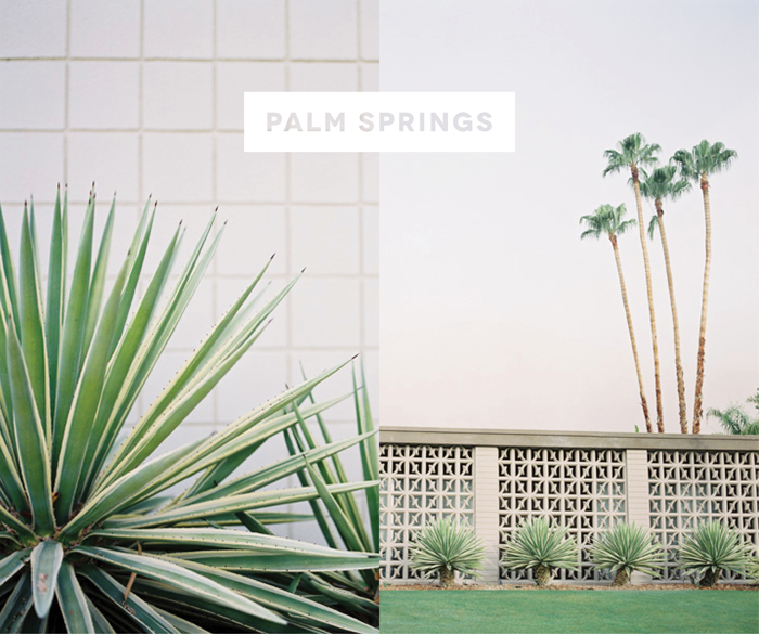 Palm Springs Photo by Jose Villa