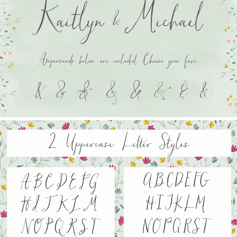 Hollyhock Messy Calligraphy Font by Angie Makes