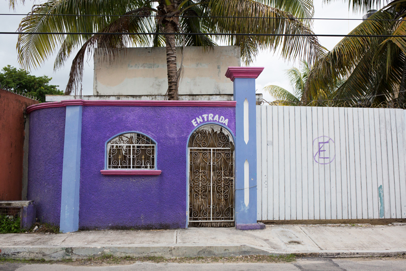 Purple Building Palm Tree Tulum