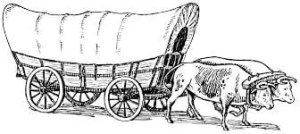 Conestoga Wagon pulled by 2 oxen