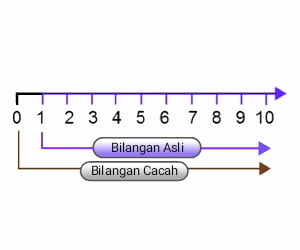 bilangan+asli+dan+bilangan+cacah