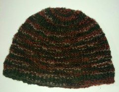 http://www.ravelry.com/patterns/library/willow-wood-beanie