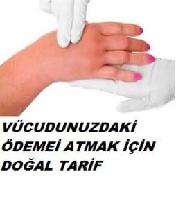 19296_1540049926270575_3702660633120857804_n