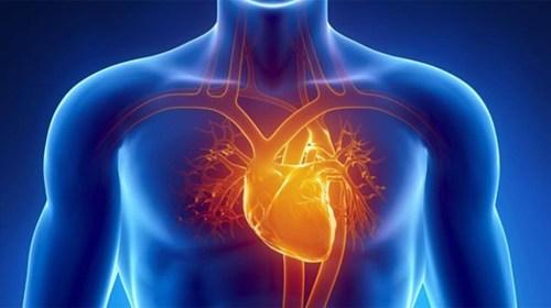 Kalp hastalıklarının habercisi belirtiler nelerdir
