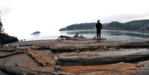 With its breathtaking cliffs and quintessential West Coast forest, Deception Pass State Park was the highlight in the last leg of our trip