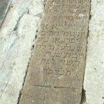 Alya Ifergan