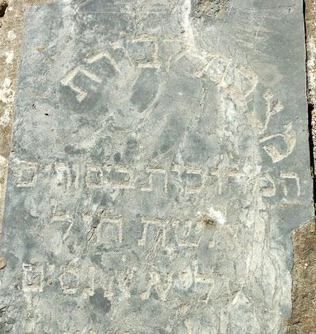 Alya Elkabas